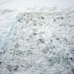 Skottad ruta i snön