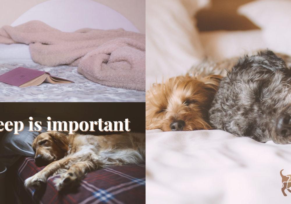 Sömn är viktigt!